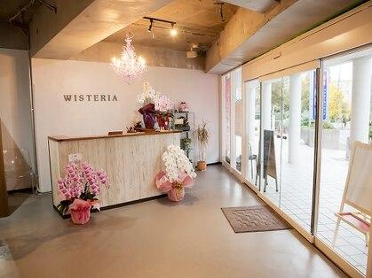 ウィステリア(Wisteria)の写真