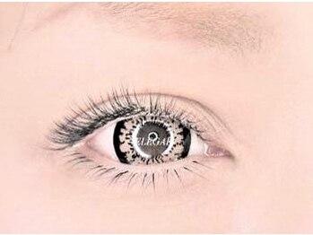 エレガ(ELEGAR)の写真/《ELEGAR》はキープ力に自信あり!!丁寧な施術であなたの目元のキレイを持続☆