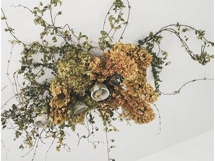 Bloom* 【ブルーム】(名古屋/まつげ)の写真