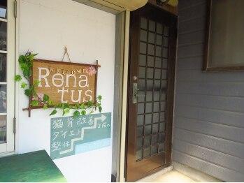 レナトゥス 豊栄店(Renatus)