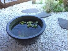風 ふうの雰囲気(中庭で泳ぐ金魚が心まで癒してくれます☆)
