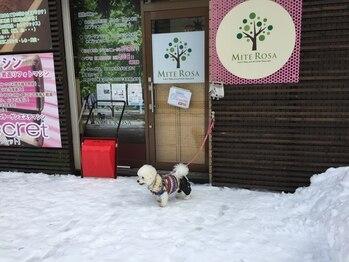 ミーテローザ 札幌旭ヶ丘店(MITE ROSA)/わんこOK!外にリードフック有