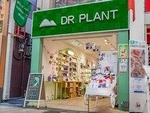 ドクタープラント 北心斎橋店(DR PLANT)