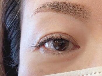 グリシーヌ アイラッシュ(glycine eyelash)の写真/自まつ毛のような自然な仕上がりで目元の印象をUP♪いつものメイクとは違う、やりすぎ感のないデザインを。