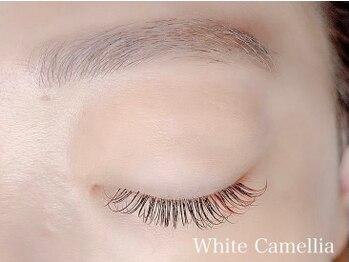 ホワイトカメリア(White Camellia)/カラーエクステ