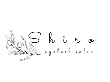 シロ(Shiro)の写真