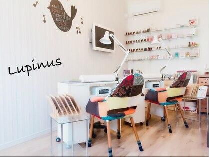 ネイルサロン ルピナス 今福店(NAIL SALON Lupinus)の写真