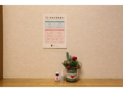 はばたきせらぴぃ 福岡本店の写真
