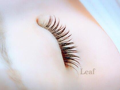リーフ(Leaf)の写真