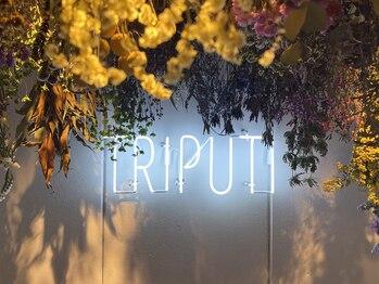 トリプティー(Triputi)(愛知県名古屋市中区)