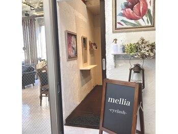 メリア 表参道(mellia by birth)(東京都渋谷区)