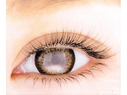 リュクス アイラッシュ アンド ビューティー 白楽店(Luxe eyelash & beauty)の写真