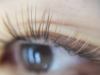 リーズサロンアンドスクール(Rees)の写真/ナチュラル派の大本命♪ブラウンカラーで透明感溢れるハーフ系eyeに◎ブラウンエクステ新規100本¥6600