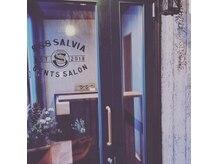 トリプルエイト サルビア(888 salvia)