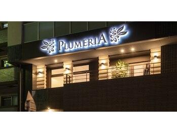 プルメリア 西新店(PLUMERIA)/