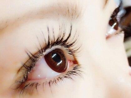 ティグルフォーアイ(Tigre for eye)の写真