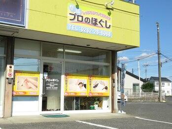 プロのほぐし(栃木県栃木市)