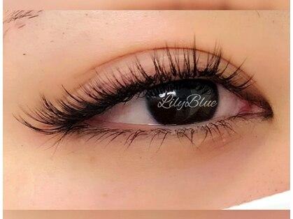 リリーブルー(Lily Blue)の写真