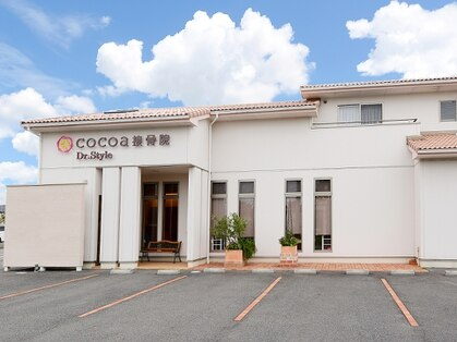 ココア(cocoa)の写真