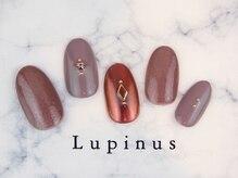 ルピナス(Lupinus)