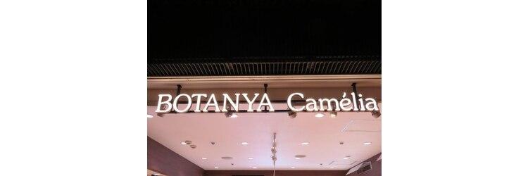 ボタンヤ キャメリア(BOTANYA Camelia)のサロンヘッダー