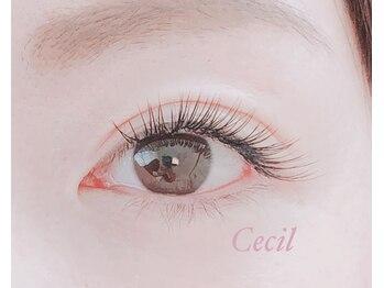 セシル(Cecil)(大阪府豊中市)
