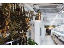サインアイラッシュ 静岡紺屋町店(Sign eyelash)の雰囲気(得意のカラーまつエクでかぶらないオシャレ、髪色とリンクも♪)