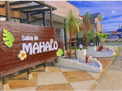 サロン ド マハロ(Salon de MAHALO)