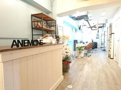 アネモネ 高円寺店(anemone)の写真