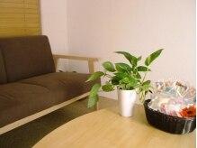 癒しのサロン 桜の木の雰囲気(施術後はこちらのお部屋で癒しの楽しい会話を…)