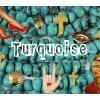 ターコイズ(Turquoise)のお店ロゴ