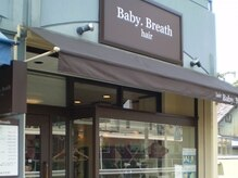 ベビーブレス(Baby Breath)