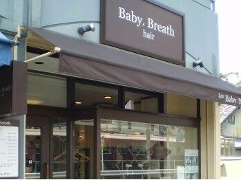 ベビーブレス(Baby Breath)(京都府京都市西京区)