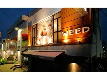 ウィード バイ サロンドオリーブ 学園前店(WEED by salondeolive)(奈良県奈良市)