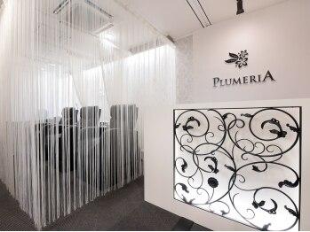 プルメリア 若松店(PLUMERIA)