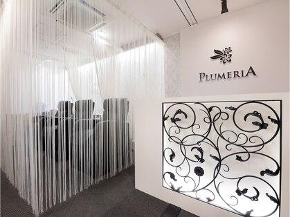 プルメリア 若松店(PLUMERIA)の写真