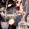 デモデ ネイル スタジオ(Demode nail studio)のお店ロゴ