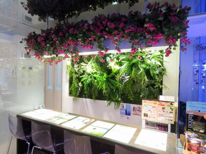 酸素カプセルサロン フォレスト 新宿東口店の写真