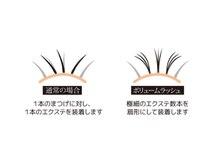 ☆最高級!抗菌3Dボリュームラッシュ100束【300本(0.06)】 6,610円
