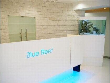 ネイル&まつげエクステ Blue Reef 【ブルーリーフ】銀座店