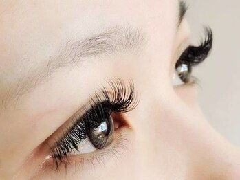 ロータスアイラッシュ(LOTUS eyelash)