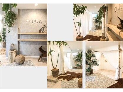 エルカ(eluca)の写真