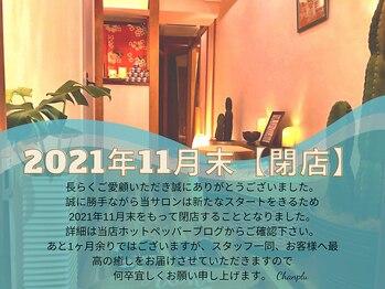 チャンプル 渋谷店(Chanplu)(東京都渋谷区)