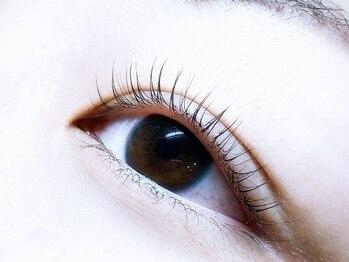 マイレアイラッシュ 京都烏丸(MAILE eyelash)の写真/【四条烏丸】まつげカール隠れ名店!まつげカール¥3800(ケラチントリートメント付)おしゃれな個室サロン♪