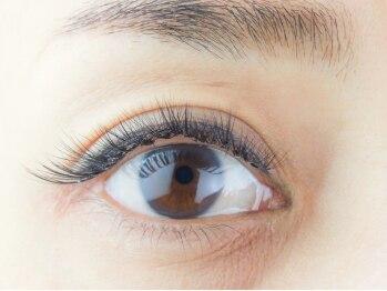 クイックアイズ(Quick Eyes)(東京都渋谷区)