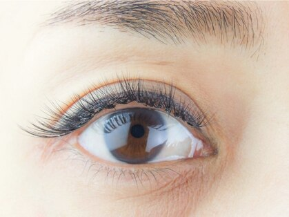 クイックアイズ(Quick Eyes)の写真