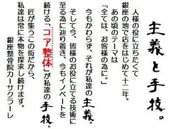 銀座カーサクラーレ/内臓ダイエット成功の写真