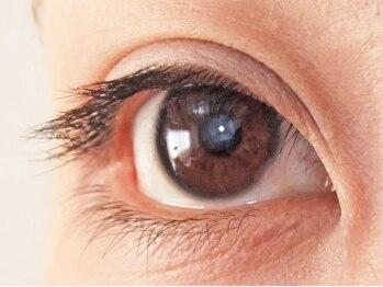 ロータスアイラッシュ(LOTUS eyelash)/[装着前]