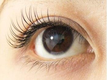ロータスアイラッシュ(LOTUS eyelash)/CCカール60本