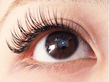 ロータスアイラッシュ(LOTUS eyelash)/CCカール100本